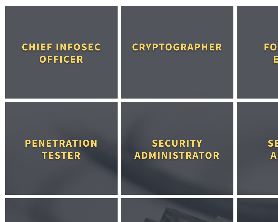 Overview of cyber security careers